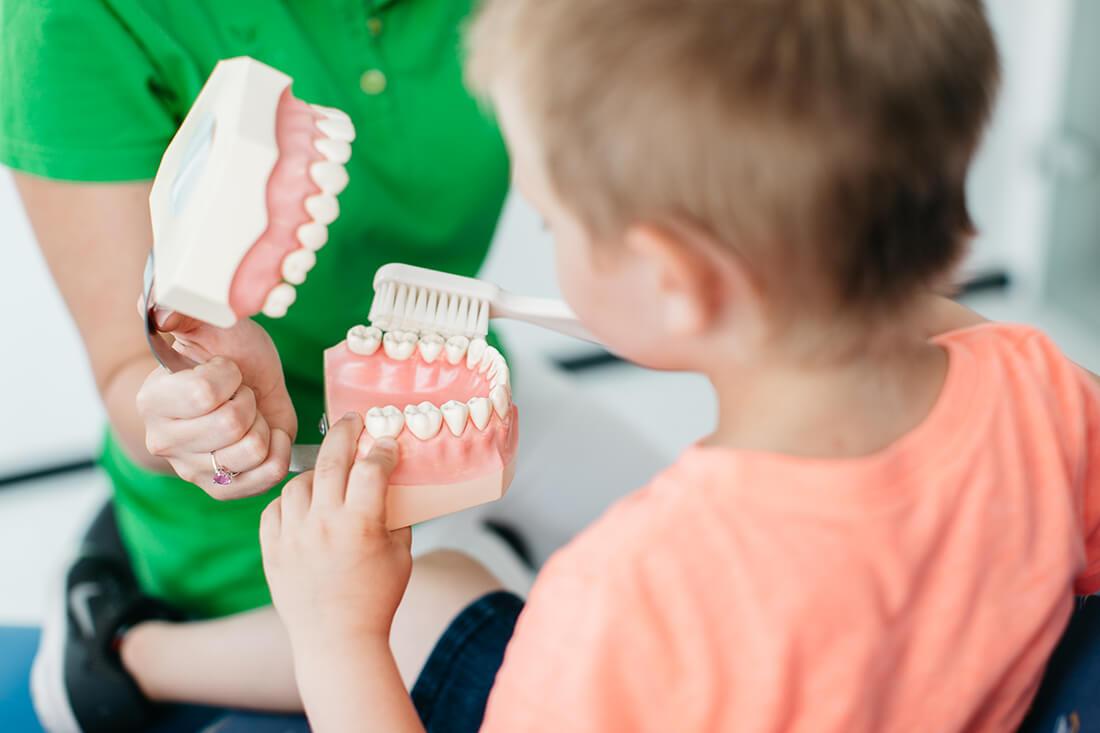 Zahnarzt Ulm - Zahnarztpraxis Dr. Wachter - Sanfte Zahnheilkunde - Praxis - Prophylaxe Kinder